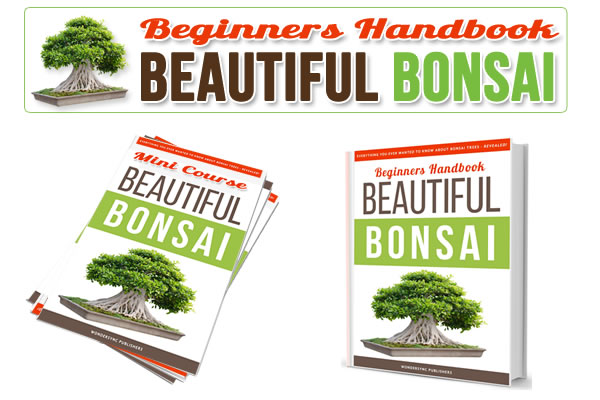 portfolio_bonsai_ebook