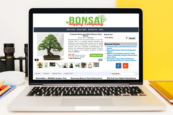 portfolio_bonsai_web